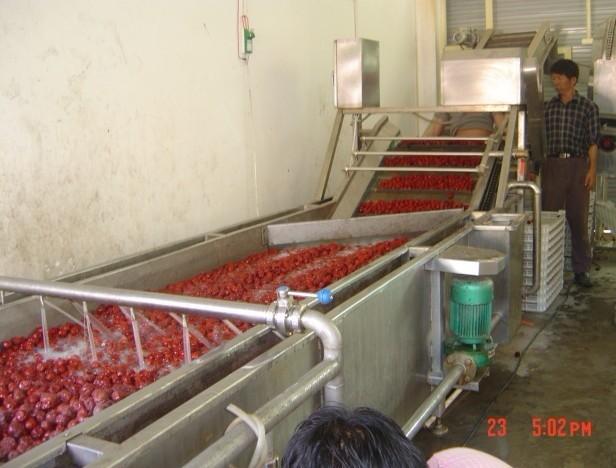 全套大枣加工设备,红枣加工厂一条生产线需要的机器